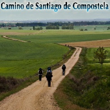 27 Days a Pilgrim on the Camino de Santiago de Compostela by Michael Thornton