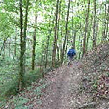Jakobsweg In Bavaria