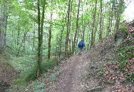 Day 1 after leaving Munich has pilgrims walking through some lovely stretches of forest