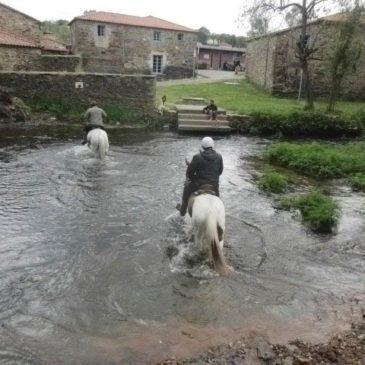 Un Camino De Santiago De Compostela A Caballo, May 2013 (A Horse Camino)