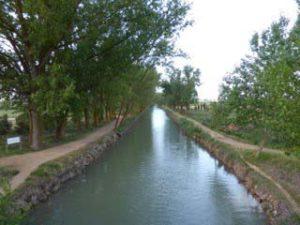Medina canal - dawn