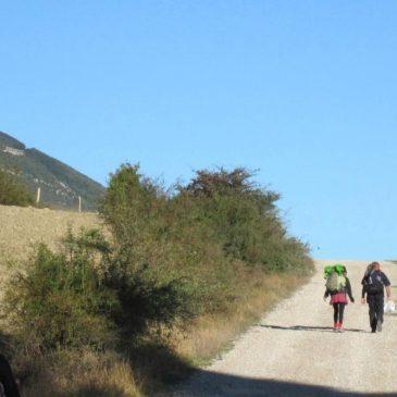 The Camino Aragon
