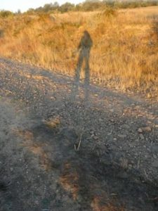 The familiar pilgrim's shadow cast on the Camino