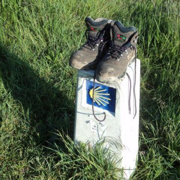 Walking the Camino – How do I Begin?