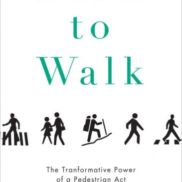 Book review: Born to Walk by Dan Rubinstein