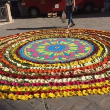 A Day of Celebration on rhe Via De Francesco