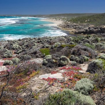 Kangaroo Island Wilderness Trail, SA