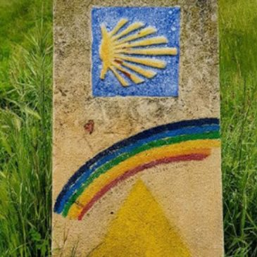 Camino for Good
