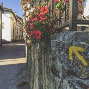 Ever Wondered about the Origin of the Yellow Arrows along the Camino?
